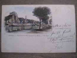 Cpa Dinant - Vue Prise De La Rive Gauche De La Meuse - ND Phot 11 - 1900 - Dinant