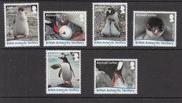 2016 British Antarctic Territory Gentoo Penguins Complete Set Of 6   MNH - British Antarctic Territory  (BAT)