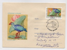MAIL Post Cover Mail USSR RUSSIA Fauna Bird Astrakhan Nature Reserve - 1923-1991 URSS