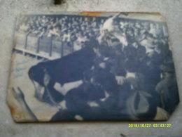 34 LUNEL HERAULT  TAUREAUX TAUREAU CAMARGUE PROVENCE RAZETEUR RASETEUR PHOTO GEORGE - Autres
