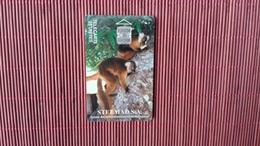 Phonecard Madagascar Animal Number  Used Rare - Madagascar