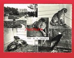 [87] Haute-Vienne > CROUZILLE Zoo Panthère Hyène Condor Lion - France