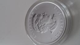 Mapple Leaf Five Dollar 1oz Silver Coin 2013 - Canada