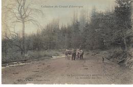 De Laquenille à Bourg-Lastic La Descente Des Bois - France