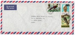 SIERRA LEONE - AIR MAIL COVER TO ITALY 1981 / THEMATIC STAMPS-BIRD - Sierra Leone (1961-...)