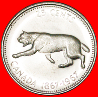 √ BOBCAT: CANADA ★ SILVER 25 CENTS 1867-1967 UNC MINT LUSTER! LOW START ★ NO RESERVE! - Canada
