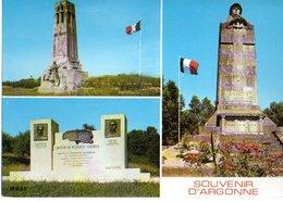 Environs De Varennes En Argonne Combat D'argonne Guerre De 1914 1918 CPM Ou CPSM - Francia
