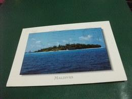 MALDIVES ISLAND OF BAROS  FRANCOBOLLO COMMEMORATIVO FIORI - Maldive