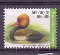 Belgie - 2018 - OBP - ** Krooneend ** Papier Gegomd Wit FSC - A.Buzin - Neufs