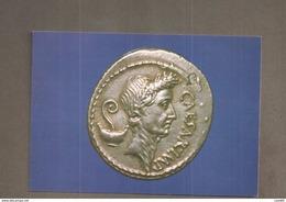 MONETA ROMANA GIULIO CESARE CARTOLINA   NON VIAGGIATA - Monete (rappresentazioni)