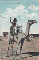 0553 Somali Camel Rider - Aden - Somalia