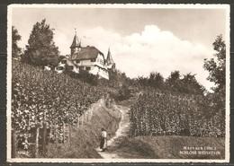 Carte P ( Marbach / Restaurant Schloss Weinstein ) - LU Lucerne