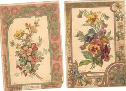 2 Cartes Anciennes Avec Descriptions De L'Eglantier Et Des Pensées . Usées. - Fleurs