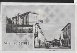 SALUTI DA... CESOLE -  FORMATO PICCOLO - VIAGGIATA 1951 FRANCOBOLLO ASPORTATO - Souvenir De...
