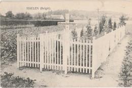 Haelen - Duits Kerkhof (zeldzaam) - Halen