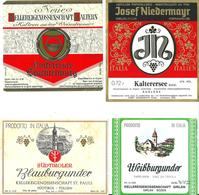 LOTTO NR. 4 ETICHETTE VINI  DELL'ALTO ADIGE - Vino Bianco