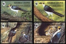 (WWF-168) W.W.F. Sierra Leone MNH White-necked Picathartes Stamps 1994 - W.W.F.
