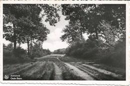 ARENDONK - Oude-Baan - Oblitération De 1943 - Uitg. Wwe J. Carpentier-Vosters, Arendonk - Arendonk