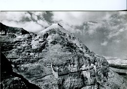 Gerico. Monte Della Quarantena - Lot. 2122 - Palestina