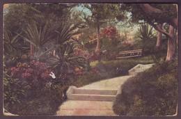1920s Unused Postcard Showing Hamilton Hotel Bermuda - United Kingdom