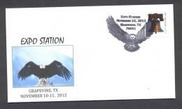 4.- UNITED STATES OF AMERICA 2012. SPECIAL POSTMARK. EAGLE - Águilas & Aves De Presa