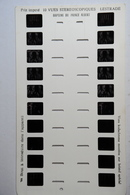 LESTRADE :  BAPTEME DU PRINCE ALBERT - Stereoscopes - Side-by-side Viewers