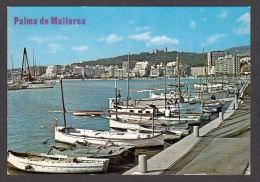 79138/ PALMA, Bahia - Palma De Mallorca