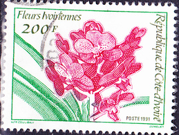 Elfenbeinküste Côte D'Ivoire - Orchidee (MiNr: 1062) 1991 - Gest Used Obl - Ivory Coast (1960-...)