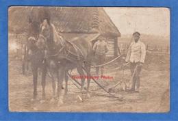 CPA Photo - à Situer - RUSSIE ? POLOGNE ? - Soldat Allemand Tenant Une Charrue - Attelage Agriculture Noir ? Colonial ? - Guerra 1914-18
