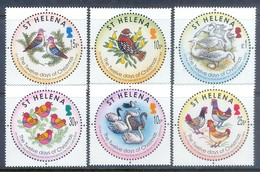 H41- St. Helena Birds From 12 Days Of Christmas. Birds. Animals. Hen. Duck. - Other