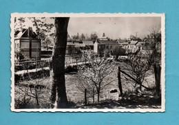 27 Eure Saint Georges Du Vievre Coin Champetre - Autres Communes