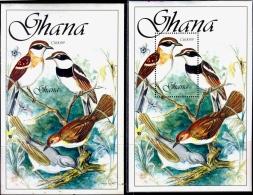 BIRDS-SENEGAL BATTIS-PERF & IMPERF MS-GHANA-1989-MNH-SCARCE-M2-86 - Climbing Birds