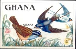 BIRDS-GOSLING'S BUNTING & BARN SWALLOW-IMPERF MS-GHANA-1989-MNH-SCARCE-M2-90 - Climbing Birds