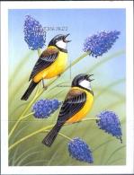 BIRDS-AUSTRALIAN GOLDEN WHISTLER-IMPERF MS-BURKINA FASO-1998-MNH-SCARCE-M2-89 - Climbing Birds