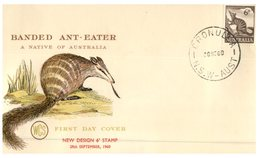 (100) Australia FDC Cover - 1960 - Ant Eater - FDC