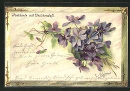 Künstler-AK Catharina Klein: Veilchen Mit Duft - Klein, Catharina