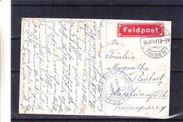 Allemagne - Empire - Carte Postale De 1917 - Oblit Tubingen - Cachet Soldaten Briefstempel - Exp Vers Nierstein - Vignet - Ocupación 1914 – 18