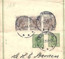 Danemark Danmark Entier Postal, Ganzsachen, Postal Stationery Bande Journal Streifbänder - Entiers Postaux