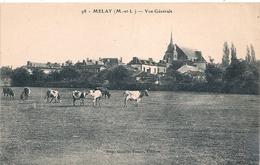 Cpa 49 Melay Vue Générale - Francia