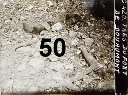 Photos Sur Papier Glacé De La Guerre 1914 1918 Apres Restauration  ,10x15 , - 1914-18