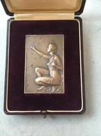Bronzen Medaille: E. De Bremaecker - Medaille In Art Nouveau Stijl - Altri