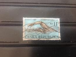 Tsjechië / Czech Republic - EK Zwemmen (11) 1997 - Tsjechië