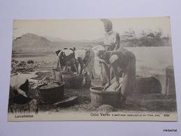 CAP VERT-Lavandeiras - Cape Verde