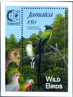 WILD BIRDS-RED BILLED STREAMER TRAIL-MS-JAMAICA-1995-OVERPRINT-SCARCE-MNH-M2-93 - Climbing Birds
