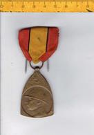 109 - MEDAILLE COMMEMORATIVE DE LA CAMPAGNE - 1914 1918 - HERINNERINGS MEDAILLE VAN DEN VELDTOCHT - 1914-18