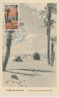 Cote Des Somalis Carte Maximum 1955 Paysages - Côte Française Des Somalis (1894-1967)