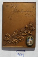 W.P.F. Morchenstein 1933 WINTER SPORT SKII SKING, ALPINISM, MOUNTAIN CLIMBING PLAQUE   PLIM - Winter Sports