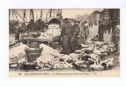 Boulogne Sur Mer. Le Débarquement Et Le Tri Du Poisson. (2880) - Pêche