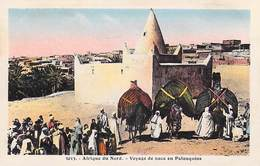 Afrique Du NORD Algérie ? -( Scènes & Types)  Voyage De Noce En Palanquins  (Photo Albert  Alger EPA 3013)  *PRIX FIXE - Algérie