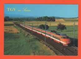 PL/5 TGV T G V  EN SUISSE // Train 8026  Campagne Voie - Treinen